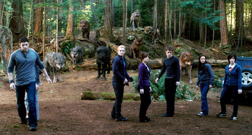 Bella, Cullens and Wolfs