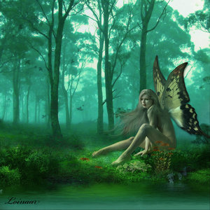 borboleta Fairy