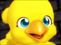 Chocobo - the-random-creatures-of-anime photo