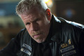 Clay Morrow - sons-of-anarchy photo