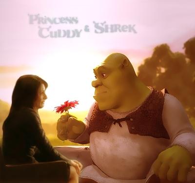 Cuddy/Shrek