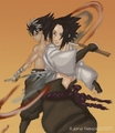 Sasuke Vs Hiei - anime-vs-anime photo
