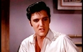 The King - elvis-presley wallpaper