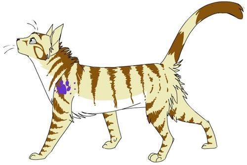 Tigerstar of Mintclan