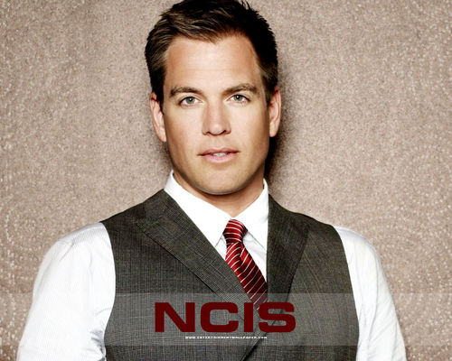 NCIS wallpaper titled Anthony DiNozzo