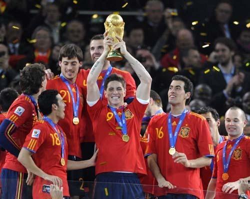 Torres World Cup Winner