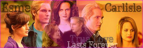 True 愛 Lasts Forever
