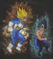 Vegeta Vs Hiei - anime-vs-anime photo
