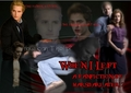 When I Left banner - twilight-series photo