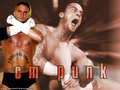 wwe - cm punk wallpaper