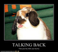 taLKINg bacK :))