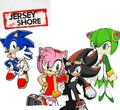 the new jersy shore cast - shadow-the-hedgehog photo