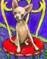 ♥ Chihuahua ♥ - chihuahuas fan art