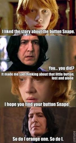 Snape's Diary. Lol