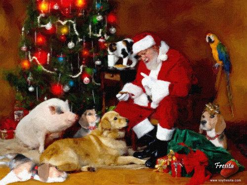 クリスマス イヌ