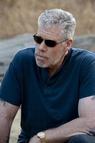 Sons Of Anarchy wallpaper called Clay Morrow