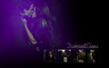 Damon & Elena Wallpaper - damon-and-elena-and-ian-and-nina wallpaper