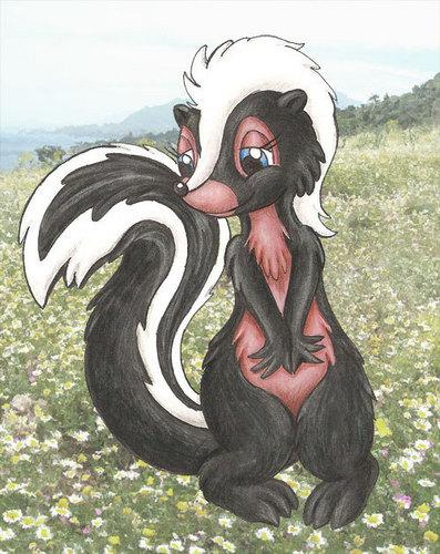 First skunk