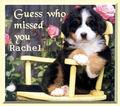 For Rachel xx