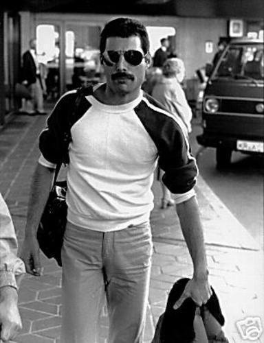 Freddie Mercury wallpaper entitled Freddie Mercury