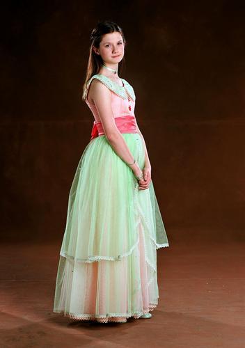Ginny's Yule Ball dress (large version)