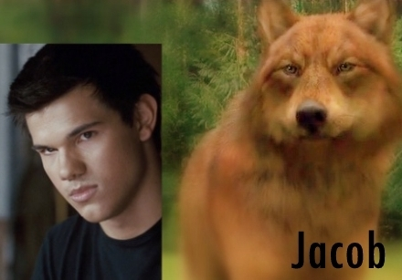 Twilight Series wallpaper titled Jake