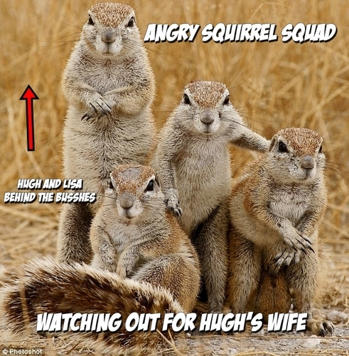 Normal Things Angry Squirrels Do