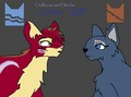 Oakheart and Bluefur  - bluestar fan art