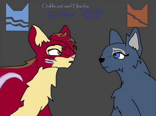Oakheart and Bluefur