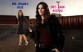 Rizzoli & Isles Wallpaper