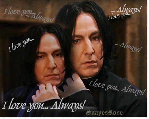 Severus-Always 爱情