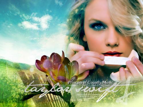 Taylor hình nền