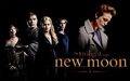 Twilight -New moon - the-twilight-saga-new-moon-movie photo