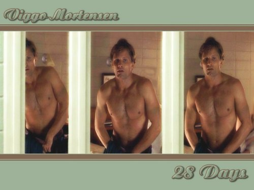 Viggo Mortensen in 28 Days