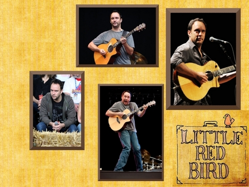 a few photos - dave-matthews-band Wallpaper