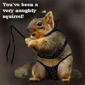 naughty! rawr!
