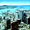 Australia - australia Icon