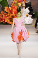 Christian Dior Fall 2010 Couture - dior photo