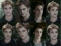 Edward Cullen Wallpaper - eclipse-movie photo