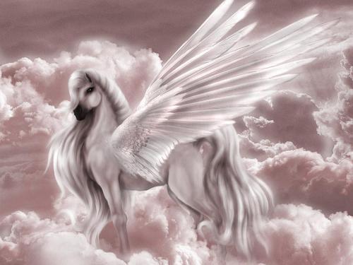 Fantasy wallpaper called Fantasy Unicorn