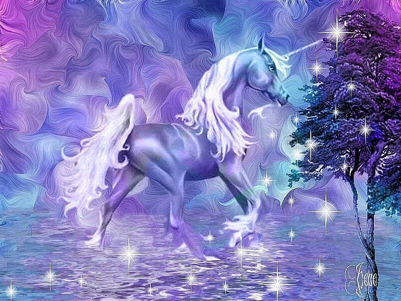 Fantasy unicorn - fantasy-animals Photo
