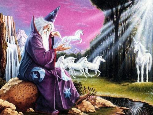 fantaisie unicorn