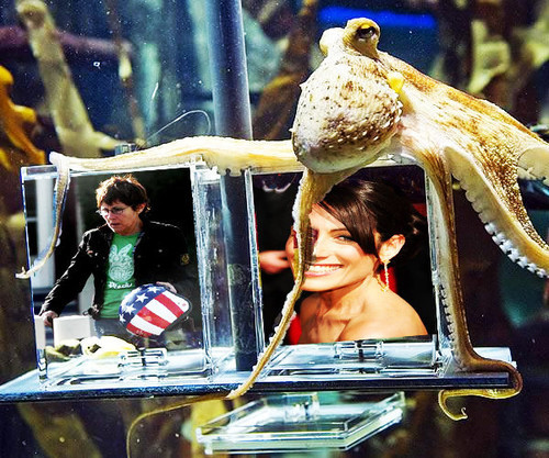 Paul the octopus is huli LOL