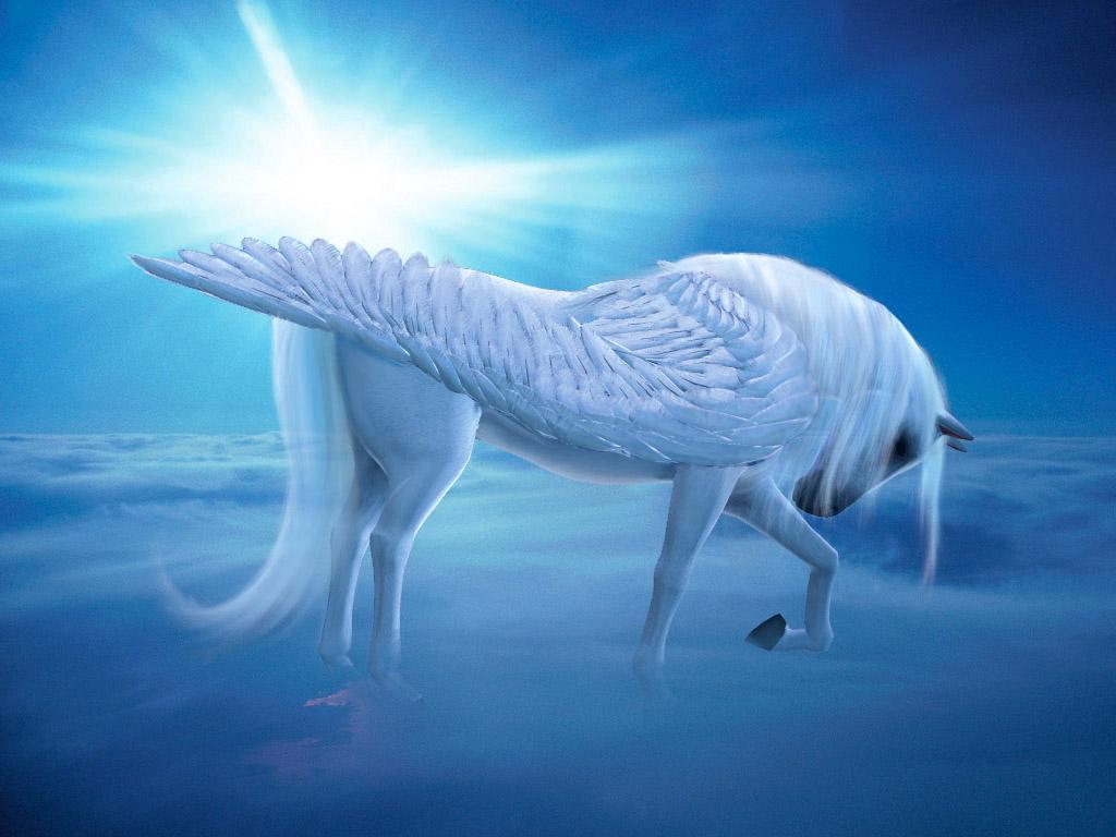 Fantasy Animals images Pegasus & Unicorn wallpaper photos ...