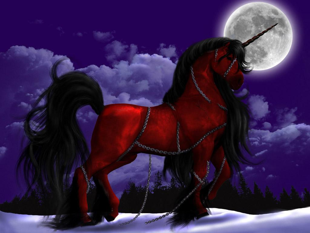 Fantasy Animals images Pegasus & Unicorn HD wallpaper and background ...