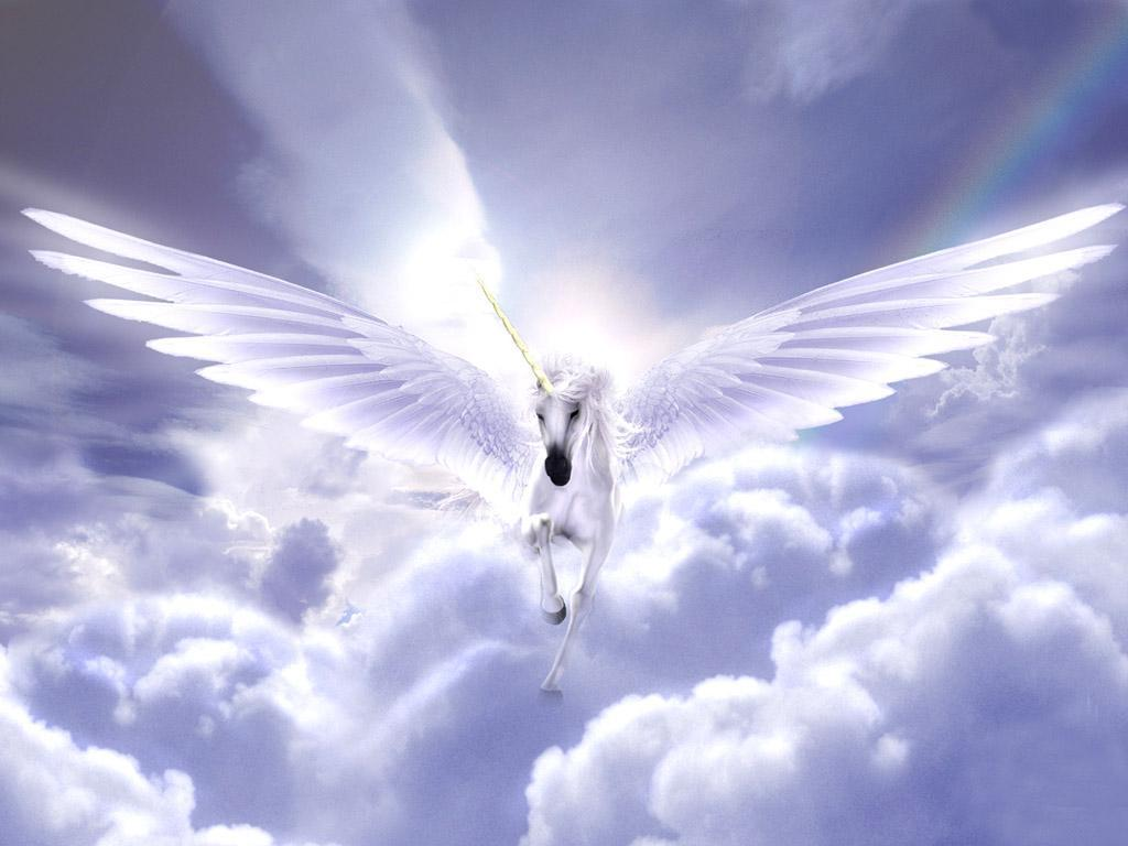 Pegasus  amp Unicorn  Pegasus