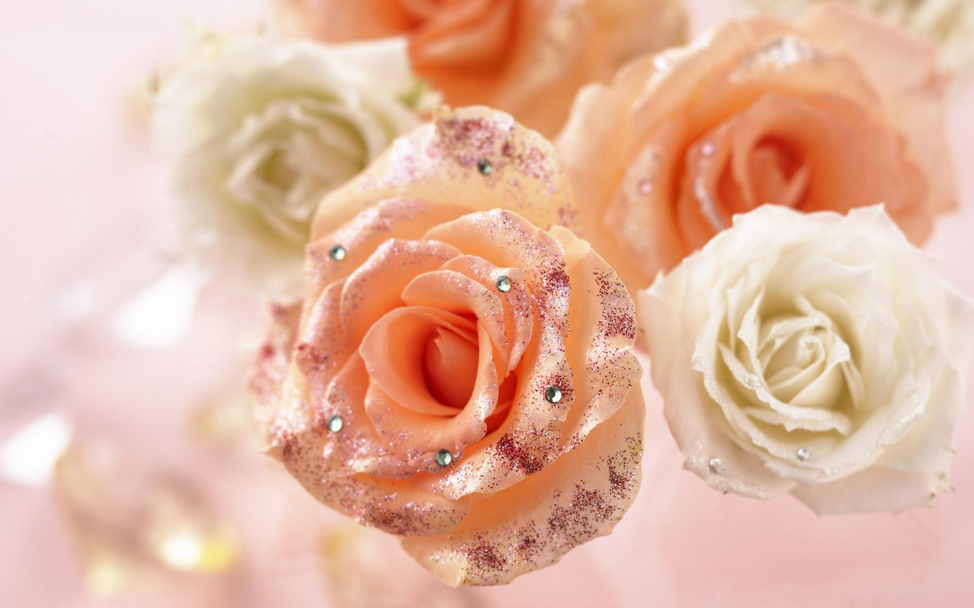 Romantic Roses - Roses Wallpaper (13966426) - Fanpop