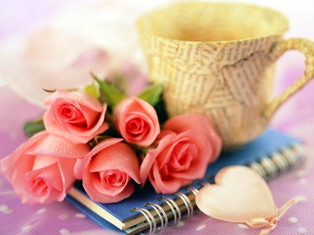 Roses romantic roses