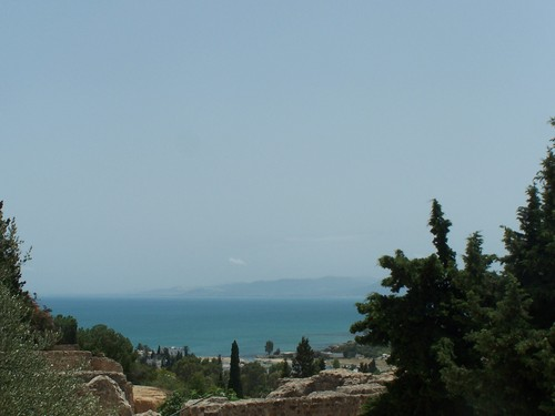 Africa Hintergrund entitled Tunisia,Hammamet El Mouradi.
