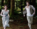 Twilight ♥ :--)  - twilight-series photo
